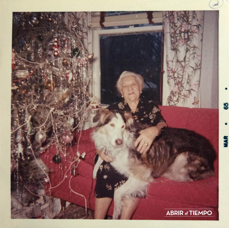 Abrir el tiempo - Navidad de perros - 1