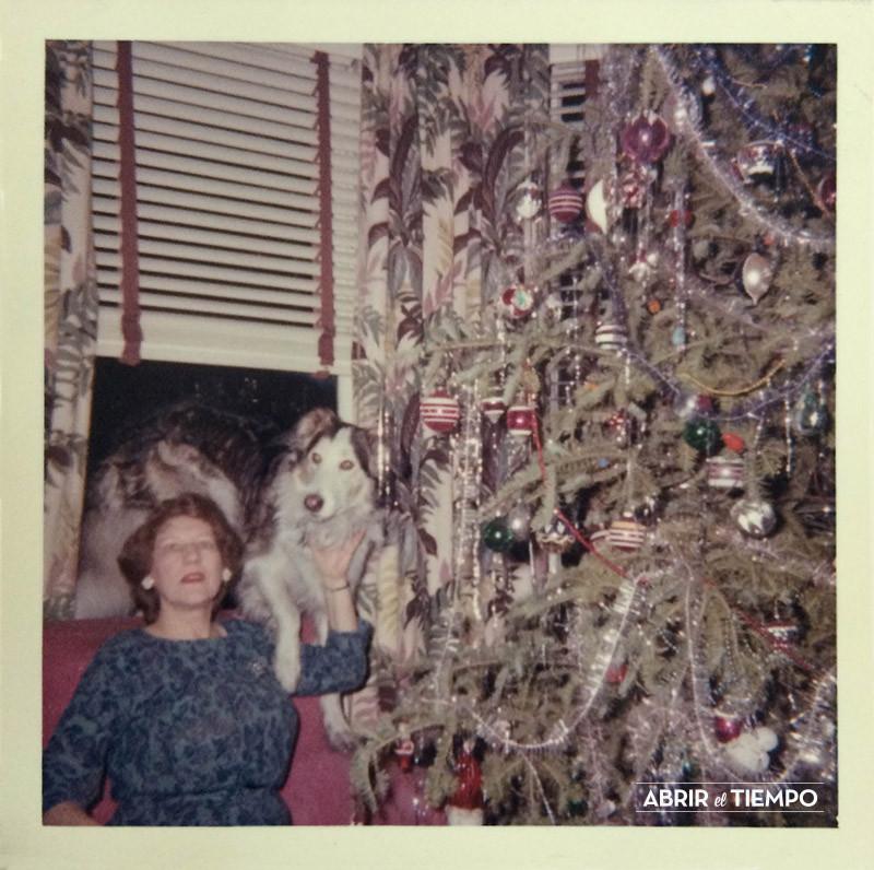Abrir el tiempo - Navidad de perros 3
