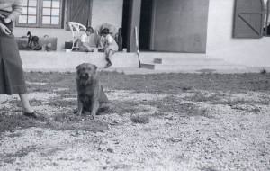 Fotografía de Lucas Guardincerri - argentina - 1930s
